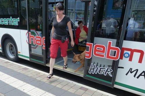 2013 bus und bahn003