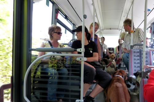 2013 bus und bahn020