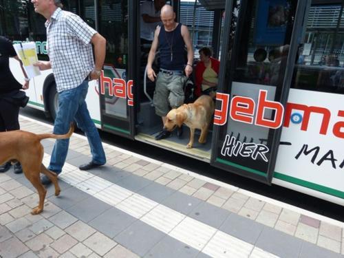 2013 bus und bahn024